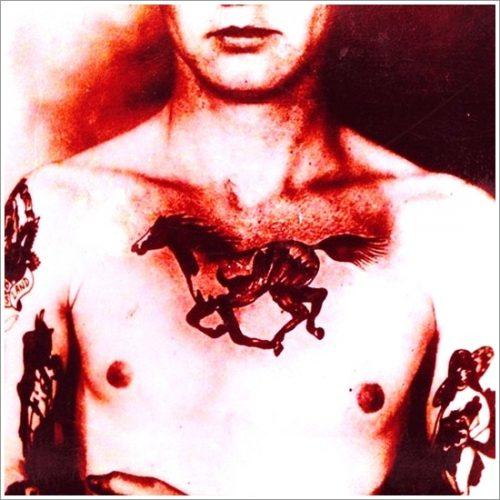 tatuajes de caballos13