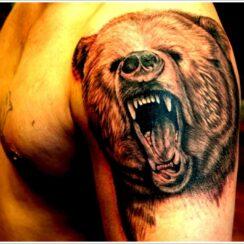 33 diseños de tatuajes de osos