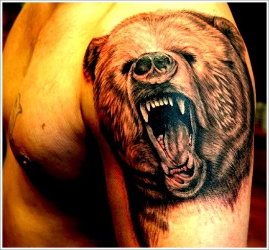 oso engañando