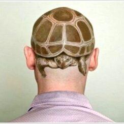 27 tatuajes de tortugas