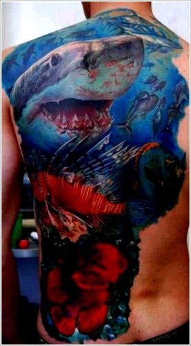 tatuajes de tiburones15