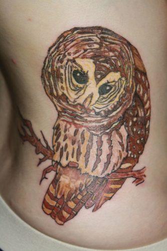 tatuajes de buhos35