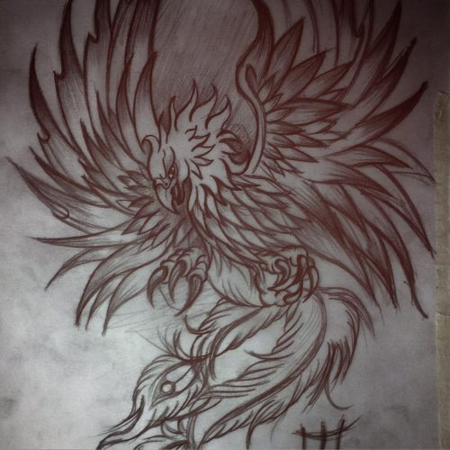 tatuajes de ave fenix43