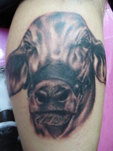 tatuajes de vacas3