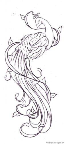tatuajes-de-plumas4